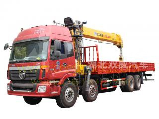 foton 16t mobile boom grue camion camion