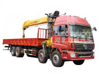 foton 16t mobile boom grue camion camions